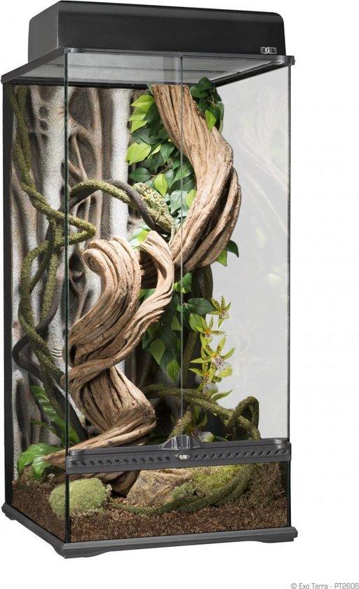 Exo Terra paludarium 45x45x90cm