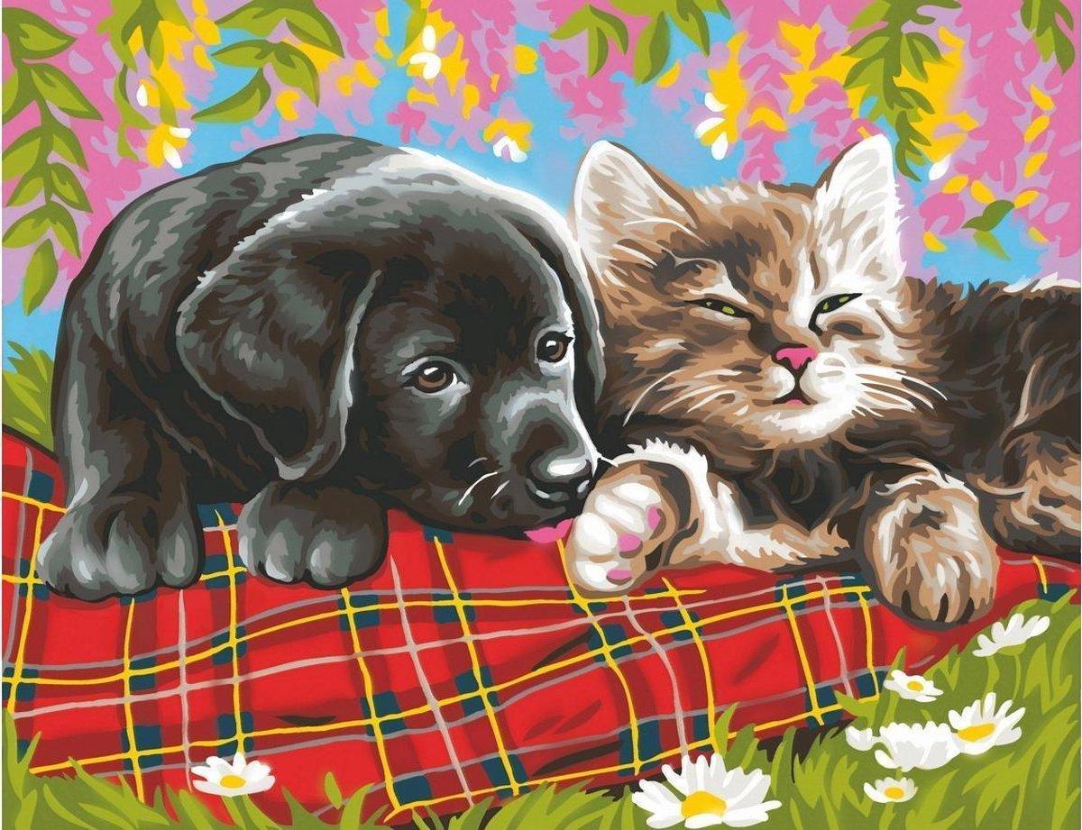 Rubye® Schilderen Op Nummer Volwassenen - Beste Vrienden - Met Frame en Standaard - 40x50 cm