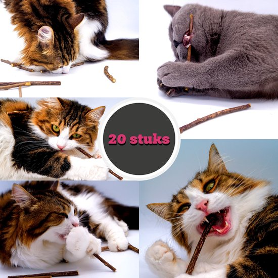 make me purr matatabi sticks (20 stuks) - silver vine kattenkruid stokjes - catnip effect kauwstokjes - kattensnack kattensnoepjes