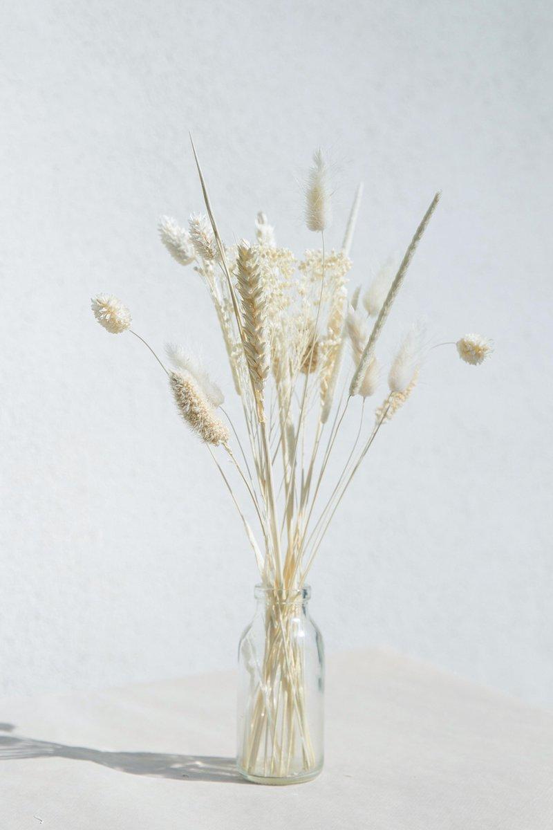 Droogbloemen boeket   30cm   Mini White + vaas   wit