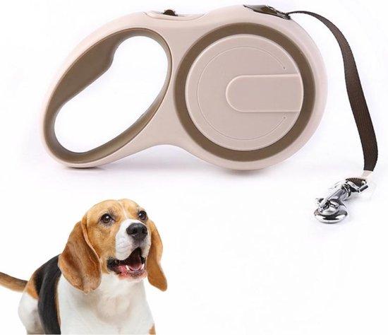 Hondenriem - Leiband Hond - Rollijn - 5 Meter - Beige - Riem Met Oprolsysteem - Hondenriem Flexi - Hondenlijn - Uitlaatriem