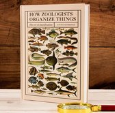 How Zoologists Organize Things