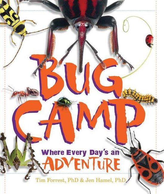 Bug Camp