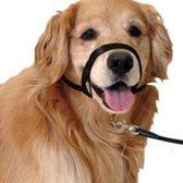 Honden Hoofdhalsband - Leader voor Honden - Tegen Trekken - Zwart - Medium/XL - Gentle Verstelbaar