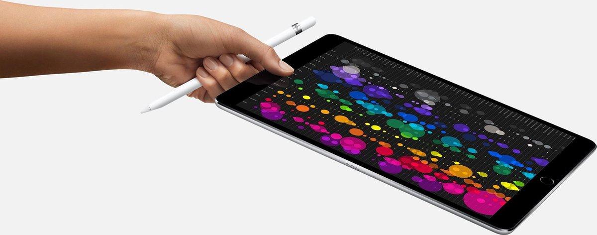 Apple iPad Mini 4   – 7.9 inch – WiFi – 64 GB – Goud – Refurbished door Leapp – C Grade (zichtbare gebruikssporen)