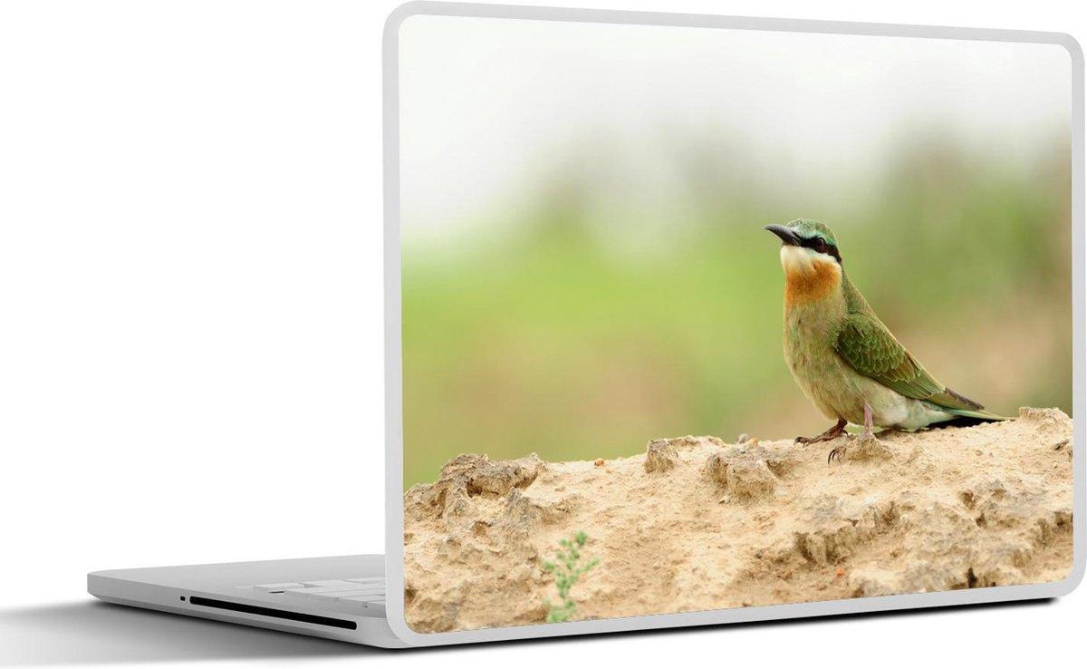Laptop sticker - 17.3 inch - Een groene bijeneter die op een heuvel rust