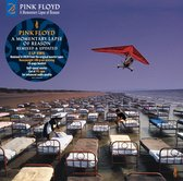 A Momentary Lapse Of Reason (2LP)