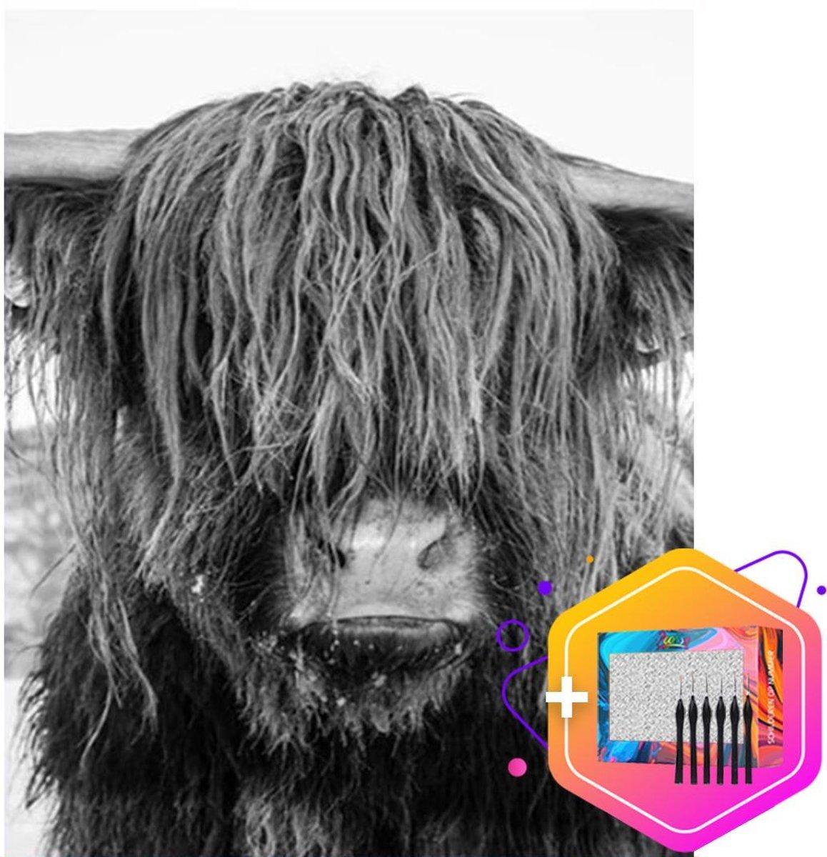Pcasso ® Buffel Zwart-Wit - Schilderen Op Nummer - Incl. 6 Ergonomische Penselen & Geschenkverpakking - Schilderen Op Nummer Volwassenen - Schilderen Op Nummer Dieren - Kleuren Op Nummer - 40x50 cm - Professionele 26-Delige Set