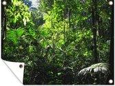 Regenwoud Brazilie Tuinposter 120x90 cm - Tuindoek / Buitencanvas / Schilderijen voor buiten (tuin decoratie)