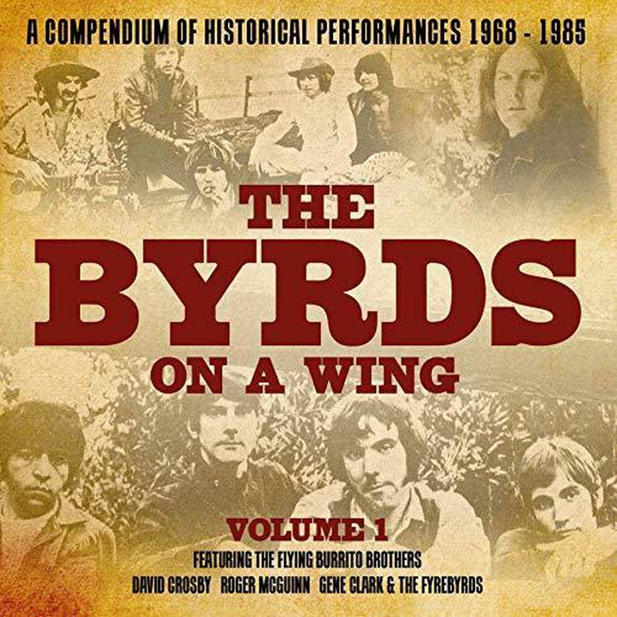 Byrds On A Wing Volume 1 - Various
