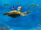 AG Design FTXXL 2228 Finding Nemo, papier fotobehang voor kinderkamer 360 x 255 cm – 4 delen