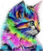 Diamond Painting 5D - Fantasie Kat - 30x30 Volledig Diamant Schilderen Hobby Dier Dieren Katten Poes Huisdier Pixelen Pixelpakket DiamondPainting