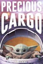 Mandalorian Precious Cargo Kind Yoda Star wars poster 61x91.5cm.