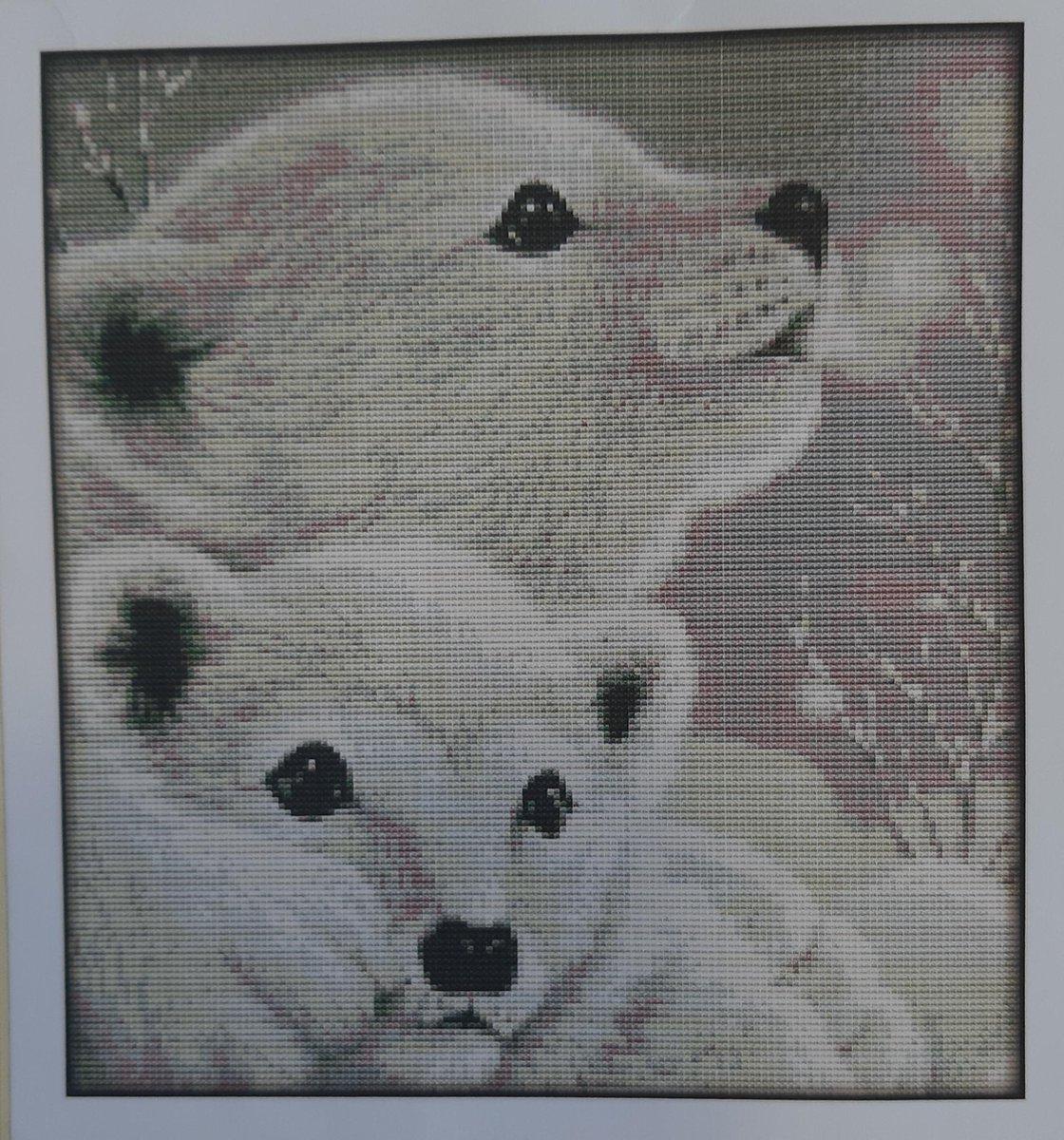 Borduurpakket voorbedrukt 34x37 cm ijsberen