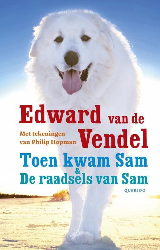 Toen kwam Sam & De raadsels van Sam - Edward van de Vendel | Readingchampions.org.uk