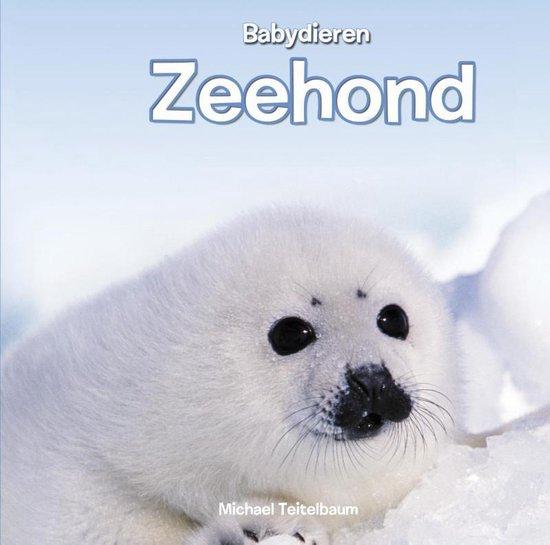 Babydieren - Zeehond - Michael Teitelbaum |