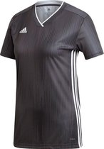 | Adidas Tiro 19 Trainingsbroek Dames Zwart Wit