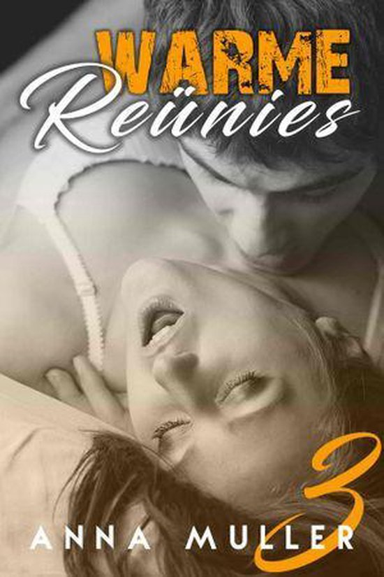 Warme Reünies 3 - Warme Reünies - Anna Muller pdf epub
