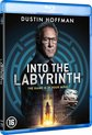 Into The Labyrinth (Blu-ray)