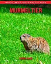 Murmeltier: Lustige Fakten und sagenhafte Bilder