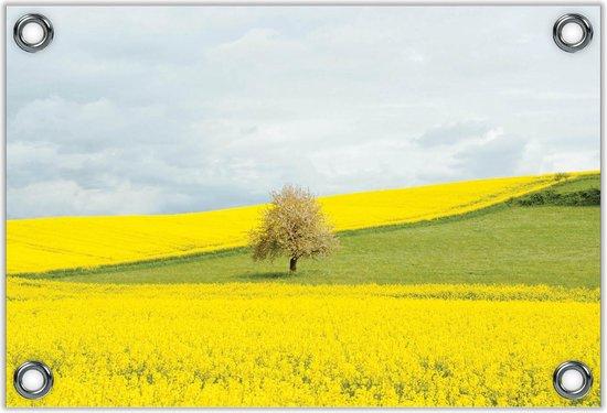 Tuinposter –Fel Gele Bloemen met Boom in Grasveld– 60x40 Foto op Tuinposter (wanddecoratie voor buiten en binnen)