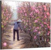 Dibond –Roze Heg– 50x50 Foto op Aluminium (Wanddecoratie van metaal)