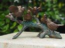 Beeldjes brons decoratie voor binnen en buiten – echte bronzen dieren beelden musjes op tak | GerichteKeuze
