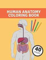 Anatomy Human Coloring Book