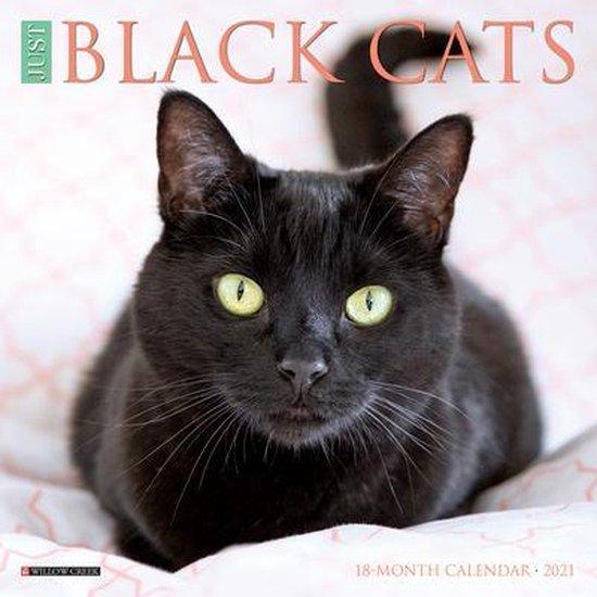 Just Black Cats 2021 Mini Wall Calendar