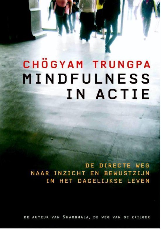 Mindfulness in actie - Chogyam Trungpa | Fthsonline.com