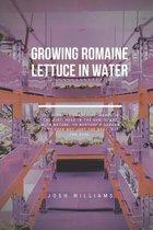 Growing Romaine Lettuce In Water