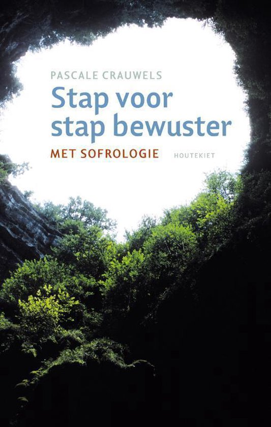 Stap voor stap bewuster - Pascale Crauwels pdf epub