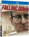 Falling Down (import)