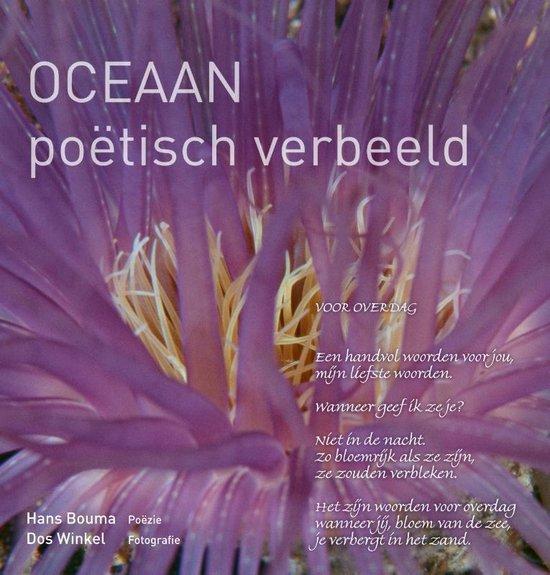 Oceaan - Hans Bouma |