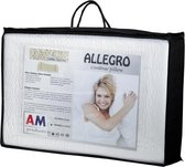 AM Product - Talalay Allego - Hoofdkussen - Latex - Soft - 9/11cm