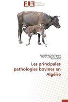 Les Principales Pathologies Bovines En Alg�rie