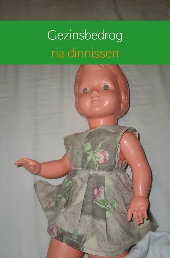 Gezinsbedrog - Ria Dinnissen pdf epub