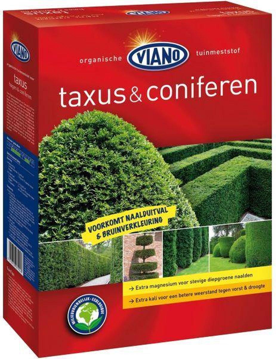 Viano Taxus & Coniferen hagen meststof 4 kg