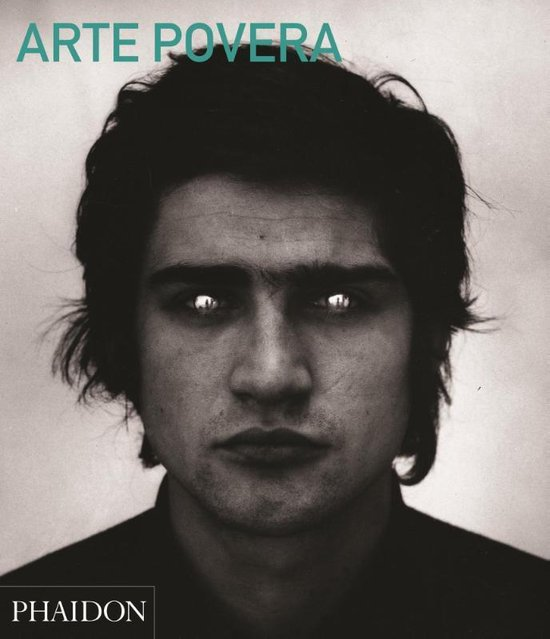 Boek cover Arte Povera (Abridged Edition) van Carolyn Christov-Bakargiev (Paperback)