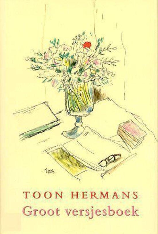 Groot Versjesboek - Toon Hermans |