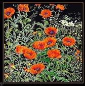 Thea Gouverneur Borduurpakket 2062.05 Papaver Oranje - Aida stof zwart 100% katoen