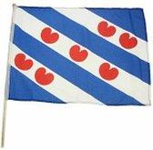 Friesland zwaaivlag 45 x 30 cm