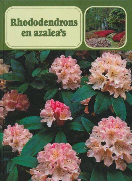 Rhododendrons en azalea s - Verboom   Fthsonline.com