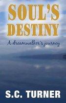 Soul's Destiny