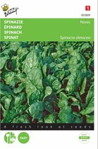Spinazie Nores 15 g - Spinacia oleracea - set van 9 stuks