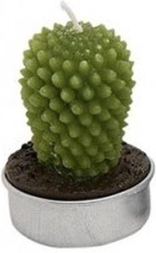 Cactus waxinelichtje 5 cm type 1