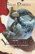 Vicentino