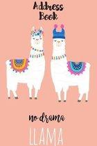 No Drama Llama Address Book
