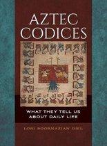 Aztec Codices