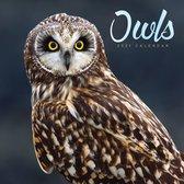 Owls Square Wall Calendar 2021